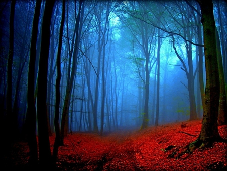 Chess With Agatha (Chapter IX) – The Red and Blue Forest ...