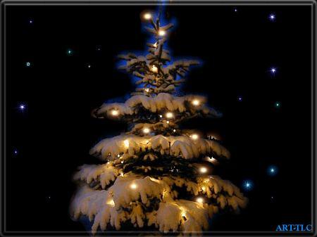 Christmas_Tree_Wallpapers