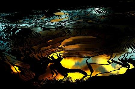 terraced-rice-fields-22__880