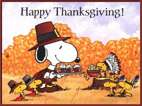 ea1b220721efe5d64e5a6ee7a50e24c9--peanuts-thanksgiving-charlie-brown-thanksgiving.jpg
